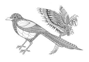 鳥01-大人の塗り絵(無料コロリアージュ)