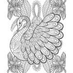 鳥03-大人の塗り絵(無料コロリアージュ)
