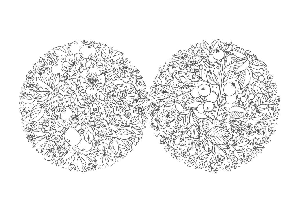 花-大人の塗り絵(無料コロリアージュ)