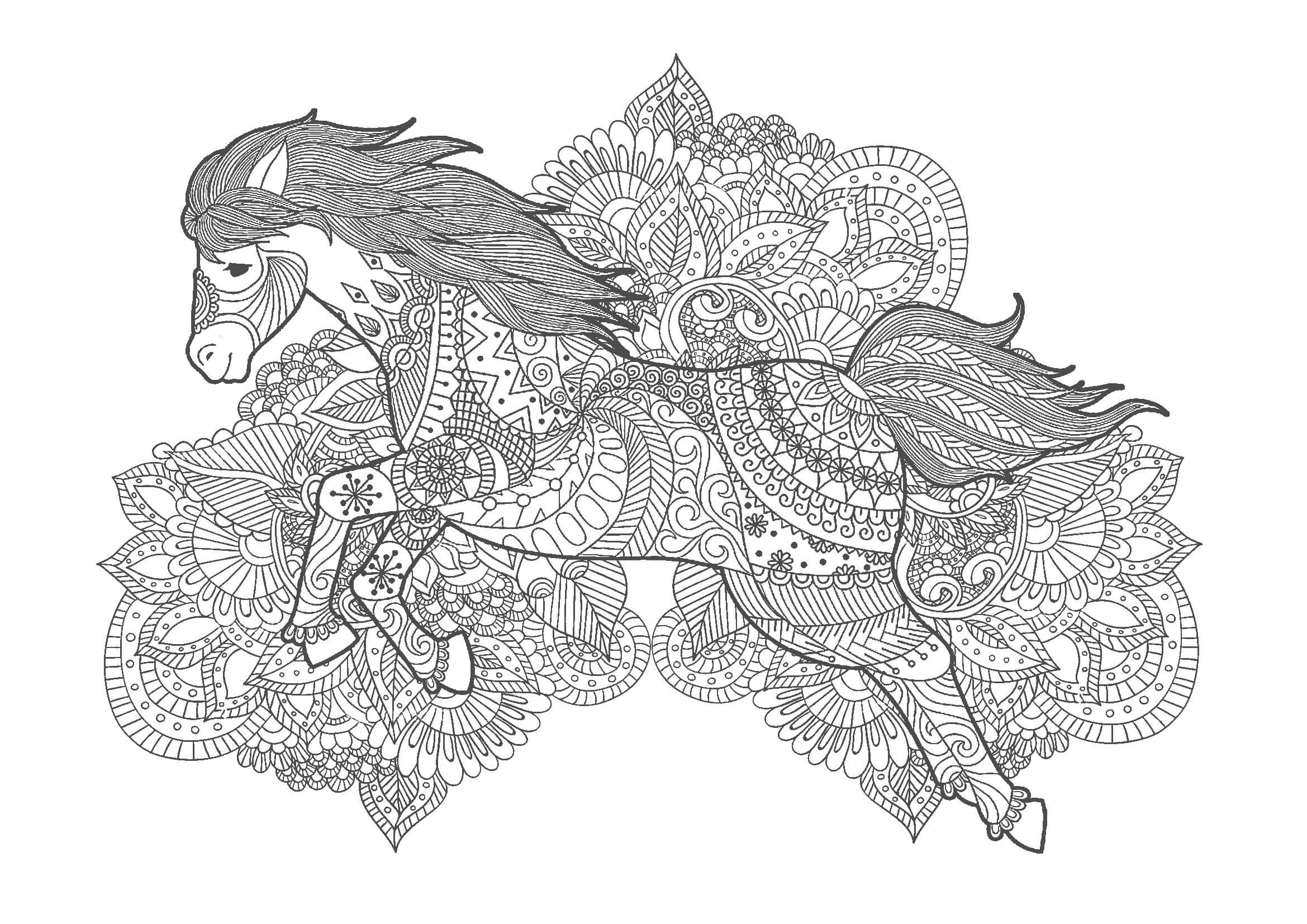 大人の塗り絵|馬(無料印刷)