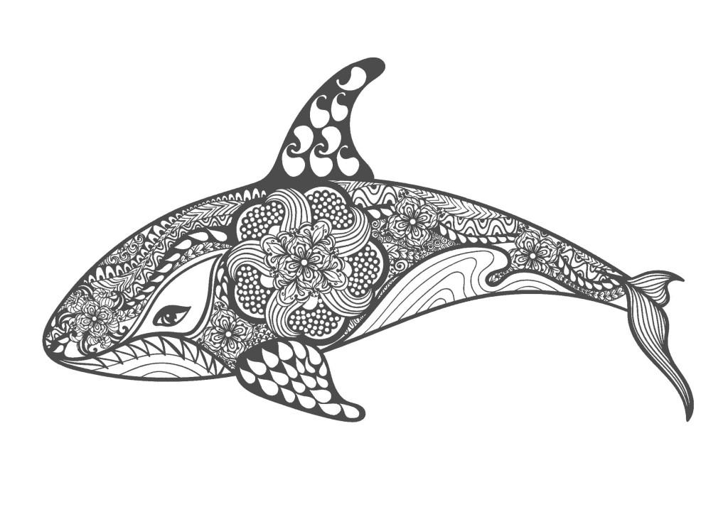 イルカ-大人の塗り絵(無料コロリアージュ)