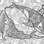 イルカとクジラ-大人の塗り絵(無料コロリアージュ)