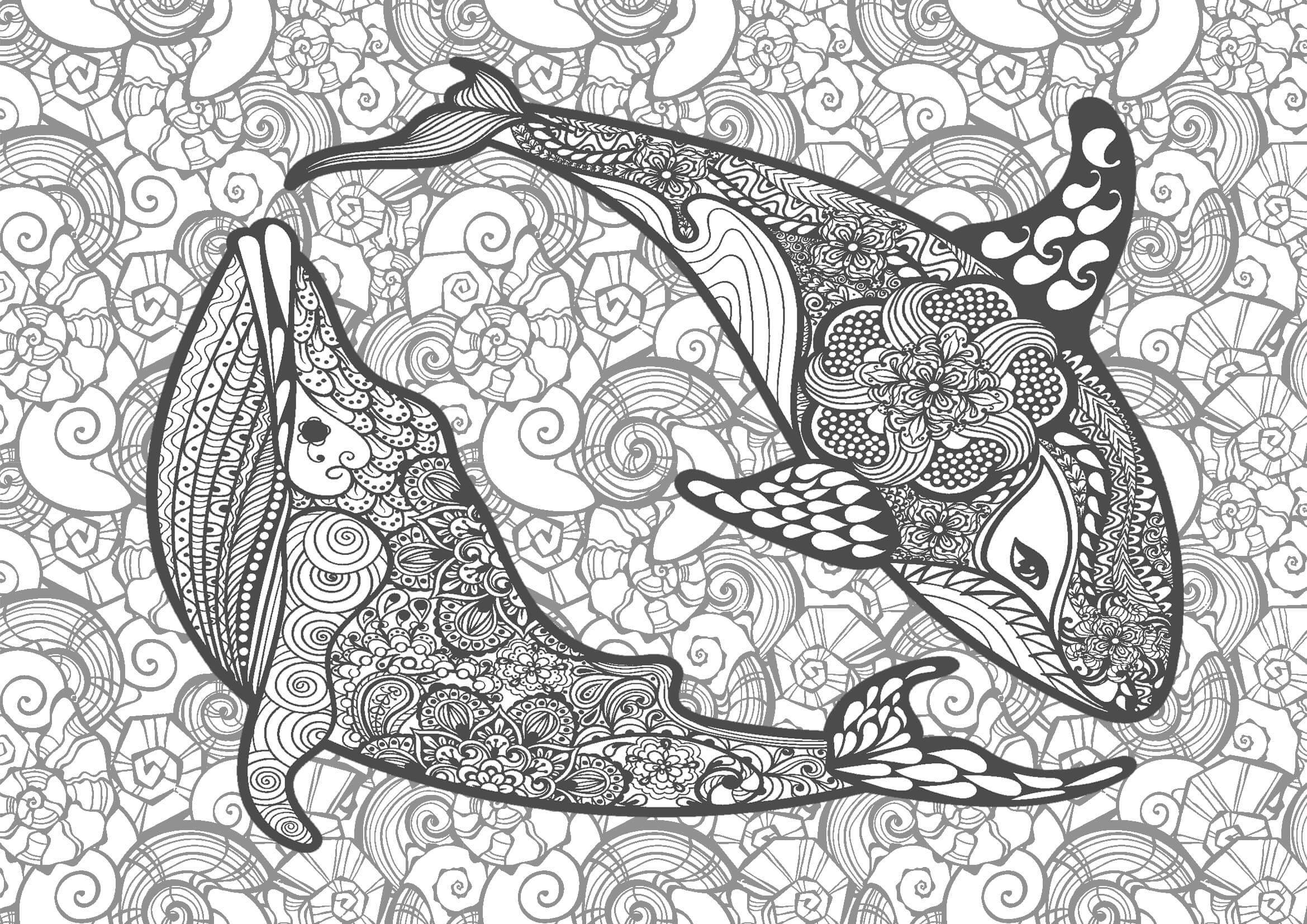 大人の塗り絵|イルカとクジラ(コロリアージュ)