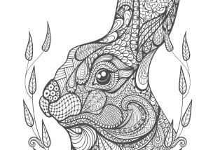 ウサギ-大人の塗り絵(コロリアージュ)