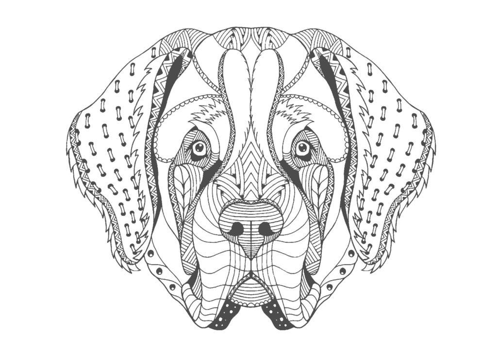 犬(顔)01-A4無料印刷の大人のぬりえ