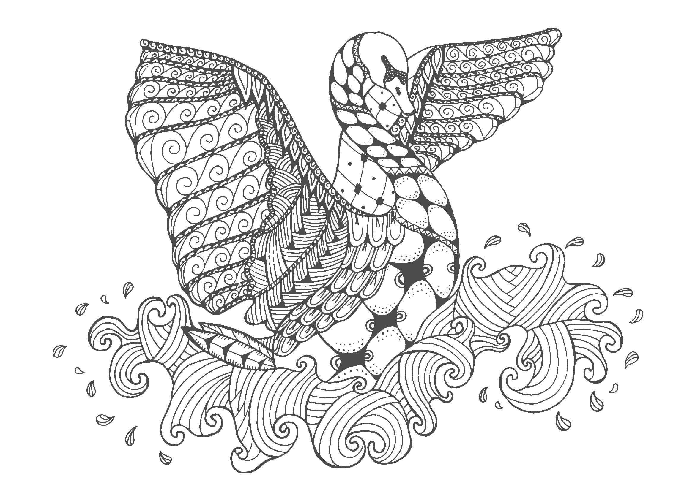 白鳥01-A4無料印刷の大人のぬりえ