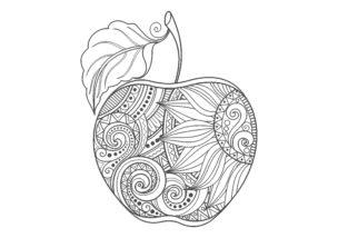 りんご-A4無料印刷の大人のぬりえ