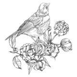 鳥と花01-A4無料印刷の大人の塗り絵