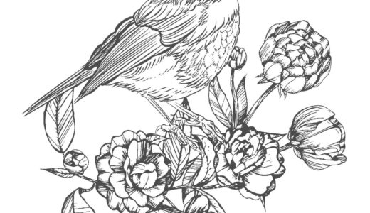 大人の塗り絵|鳥と花vol.2(無料印刷)