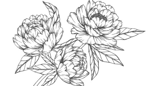 大人の塗り絵|花vol.2(無料コロリアージュ)