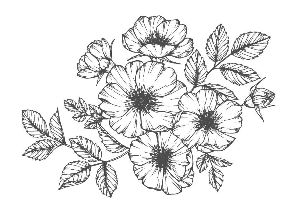 大人の塗り絵03-花vol.2