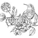 鳥と花01-A4無料印刷の大人のぬりえ